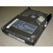 Жесткий диск 18.4Gb Quantum Atlas 10K III U160 SCSI (Апрелевка)